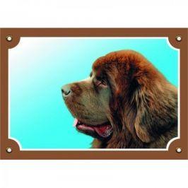 Barevná cedulka Novofundlanský pes hnědý