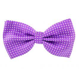 Vsepropejska Elegant fialový motýlek pro psa s puntíky | 25 - 42 cm