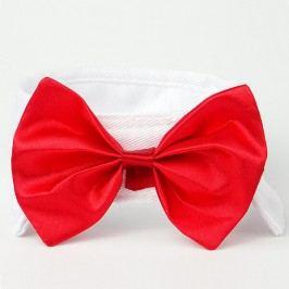 Červeno-bílý motýlek pro psa s límcem 20 - 23 cm
