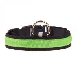 Zopet Svítící obojek pro psa v zelené barvě 52 - 60 cm