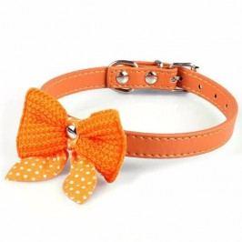 Zopet Oranžový obojek s motýlkem 27 - 36 cm