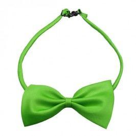 Zelený motýlek pro psa