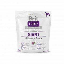 Brit Care Grain Free Giant Salmon & Potato 1kg