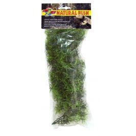 Zoomed Terarijní rostlina ZMD Cashuarina M