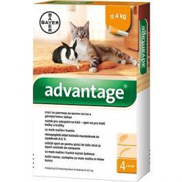 Advantage 4×0,4 ml - spot-on pro malé kočky a králíky