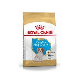 Royal Canin Breed Kavalír King Charles Junior  1,5kg