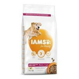 Iams Dog Senior Large Chicken 3kg