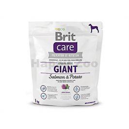 BRIT CARE Grain-Free Giant Salmon & Potato 1kg