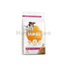 IAMS for Vitality Dog Senior Small & Medium Chicken 3kg