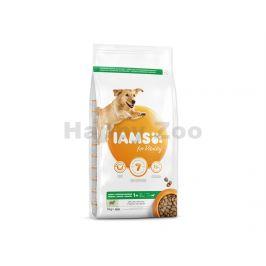 IAMS for Vitality Dog Adult Large Lamb 3kg