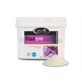 HORSE MASTER Equilytes Powder 2kg