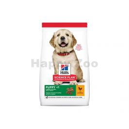 HILLS Canine Puppy Large Breed Chicken 14kg