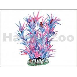 Rostlina KARLIE-FLAMINGO Guyana (XS) Purple 9cm