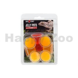 Krmivo REPTI PLANET Jelly Pots Fruit (8ks) (s vitamínem A + C)