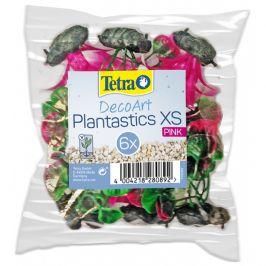 Rostlina Tetra Mix růžový XS (6ks)