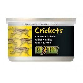 Cvrčci malí EXO TERRA 34g