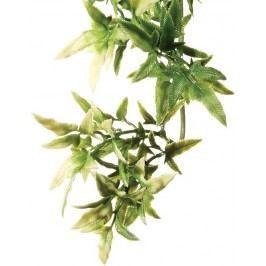 Rostlina EXO TERRA Croton malá 40 cm