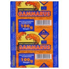 Krmivo KATRINEX Gammarus mražené 100g