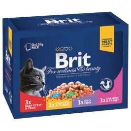 BRIT Premium Cat Family 12x100g