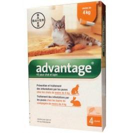 Pipeta pro kočky Advantage cat do 4kg