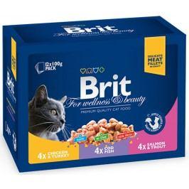 Kapsičky BRIT Premium Cat Family Plate Poultry + Fish 12x100g