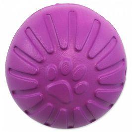 Hračka Dog Fantasy EVA míček fialový 9cm