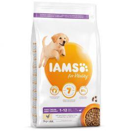 IAMS Dog Puppy Large Chicken 3 kg