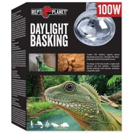 REPTI PLANET žárovka Daylight Basking Spot 100 W