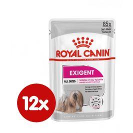 Royal Canin Exigent Dog Loaf 12x85 g