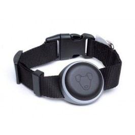 Mishiko Premium GPS a fitness obojek pro sledování vašeho miláčka, černý - II. jakost