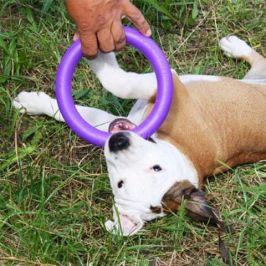 Dog Puller MINI - 18/2 cm