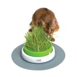 Hagen Trávník CAT IT Design Senses 2.0
