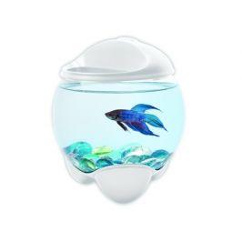 Tetra Betta Bubble akvárium bílá 1,8l