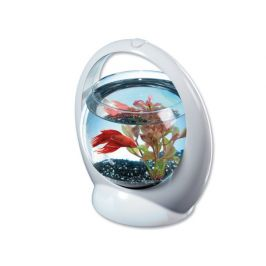 Tetra Akvárium Betta Ring 1,8 l